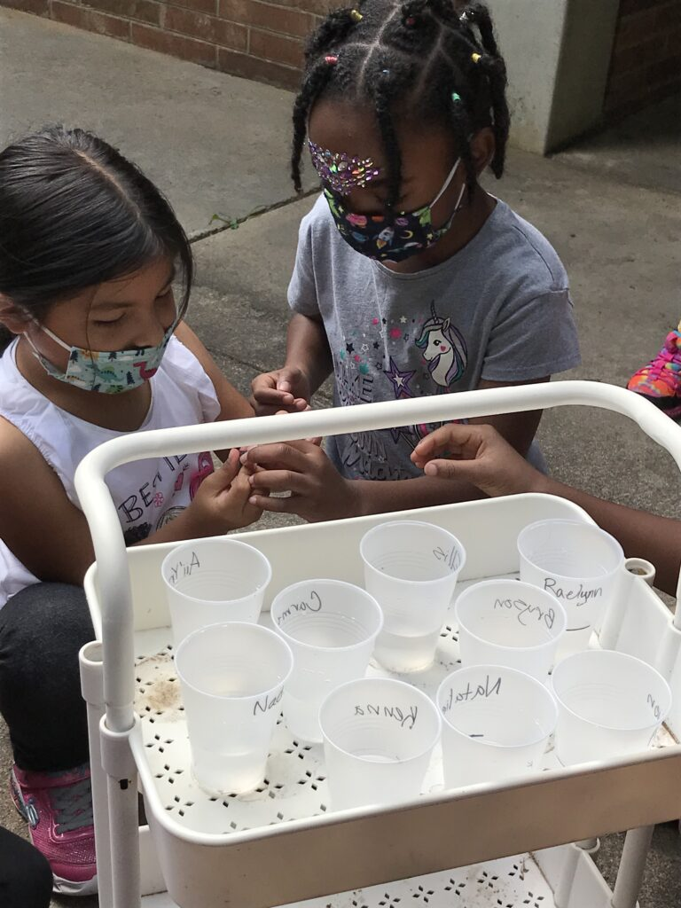Each student had their own rain gauge with their names labeled on them.